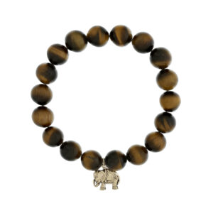 Tiger_eye_elephant